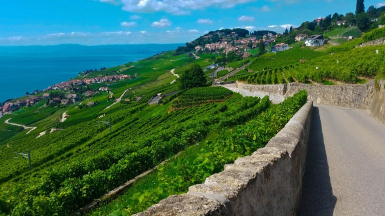 A road on the Lavaux